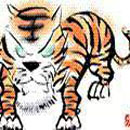 1962 animal births - Chinese year of the tiger 1986 ...